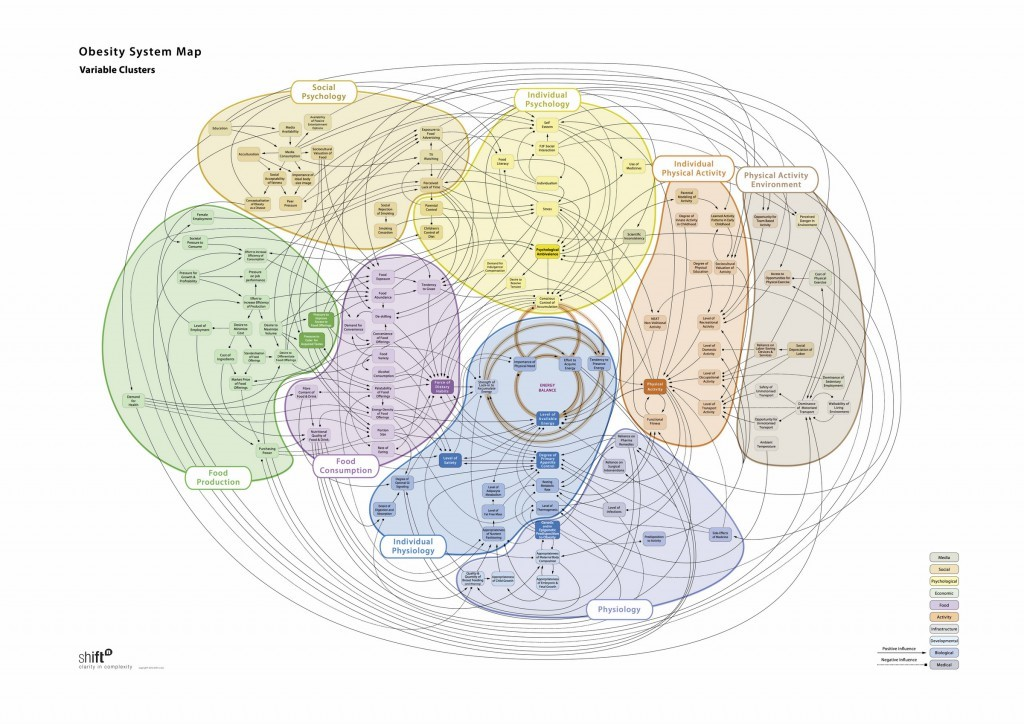 Obesity Systems Map
